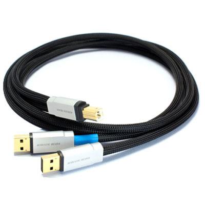 ACOUSTIC REVIVE ハイエンドUSBケーブル USB-1.0SPS
