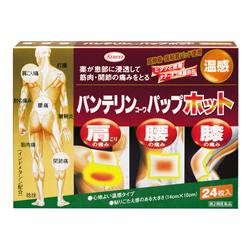 【第2類医薬品】【興和】バンテリンコーワパップホット 24枚 ※お取り寄せ・・・