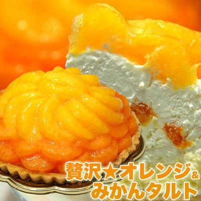 天然生活 さっぱりフルーティー♪贅沢★オレンジ&みかんタルト SM0001008・・・