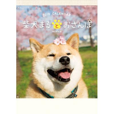 【100個セット】カレンダー 柴犬まるとおさんぽ 291167・・・
