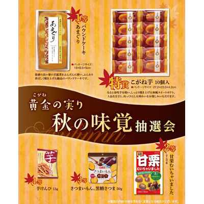 黄金の実り 秋の味覚抽選会100人用 2933618