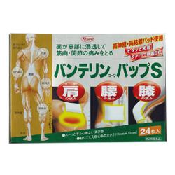 【第2類医薬品】【興和新薬】バンテリンコーワ パップS 24枚