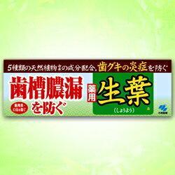 【小林製薬】生葉(しょうよう)a 100g