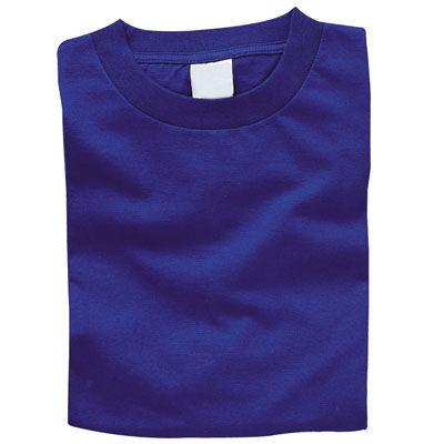 アーテック カラーTシャツ M 032 ロイヤルブルー ATC-3871・・・