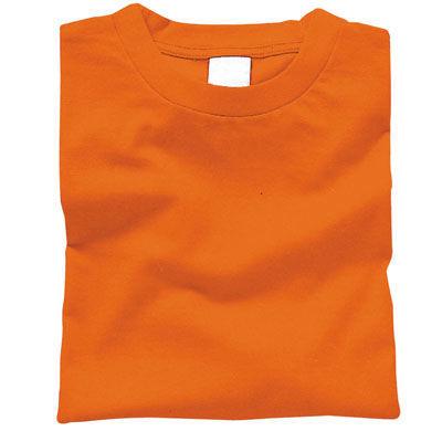 アーテック カラーTシャツ L 015 オレンジ ATC-38725