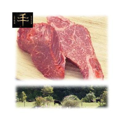 【納期目安:1週間】千屋牛「A5ランク」ステーキ(ヒレ)肉 300g(150g×2) TSH-300(G)