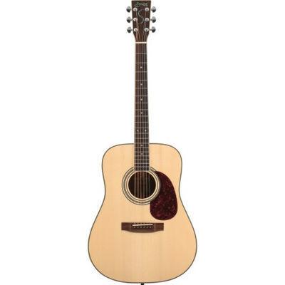 SYAIRI YD-3M N アコースティックギター ソフトケース付き 4534853520744