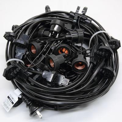 長谷川製作所 提灯コードライトタイプ CCA220L20P10