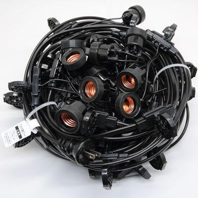 長谷川製作所 提灯コードライトタイプ CCA175L30P05